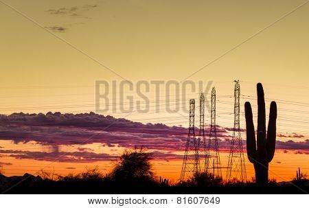 Electricity power supply concept image for dry west desert regions of USA. Saguaro tree in foreground with power lines silhouetted against dramatic late evening sunset.