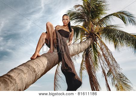Beautiful and fashion young woman laing down coconut palm on beach