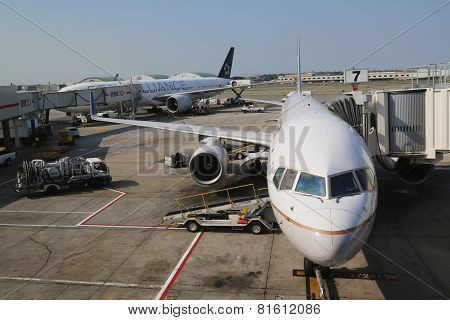 United Airlines and ANA Star Alliance planes at the gates at the Terminal 7 at JFK Airport