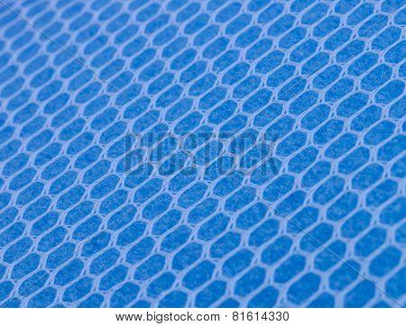 Sponge Texture.