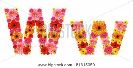 w, flower alphabet