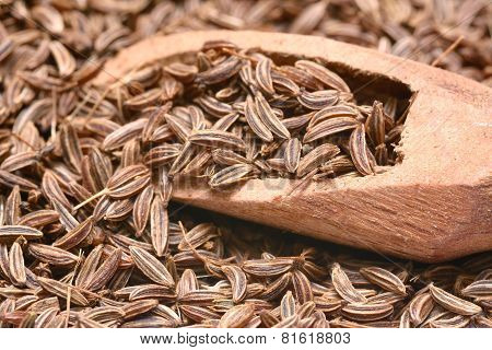 Closeup Of Caraway-seeds