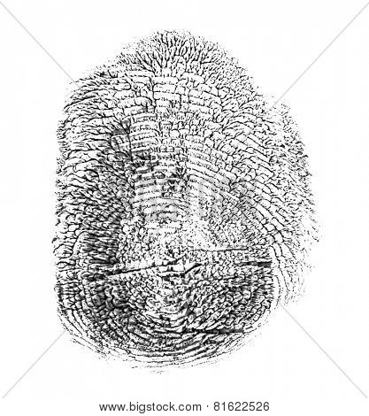 black finger print isolated on white background
