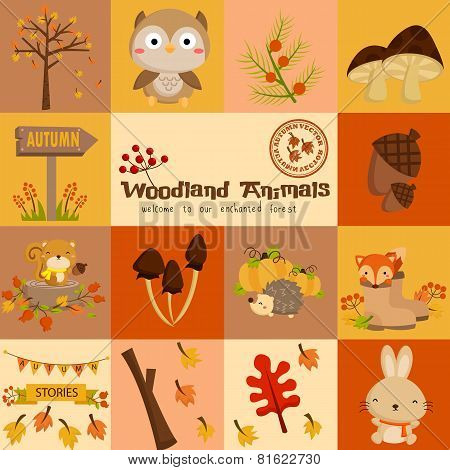 square woodland animal autumn vector set