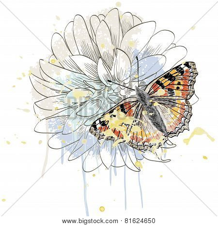 butterfly and peony