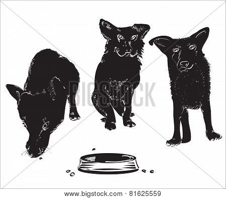 Dogs Near A Bowl