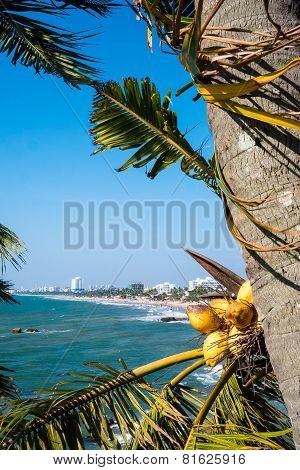 Sri Lanka's Capital Coastal City Of Columbo