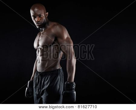 Portrait Of Muscular Male Boxer