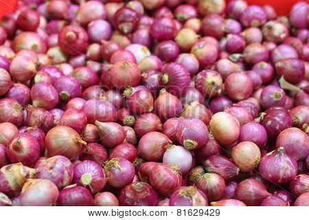 Shallot Onion In The Market