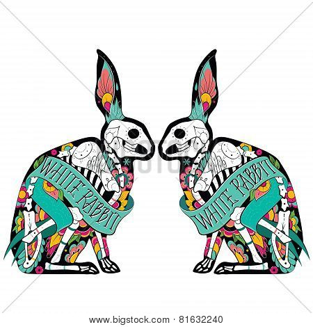 Colorfull rabbits