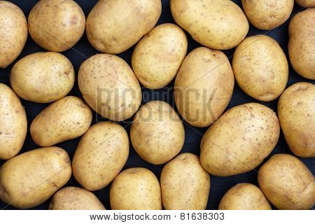 Many arranged potatoes from above.