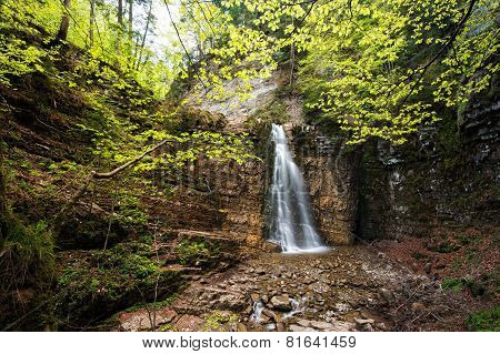 waterfall in green wood