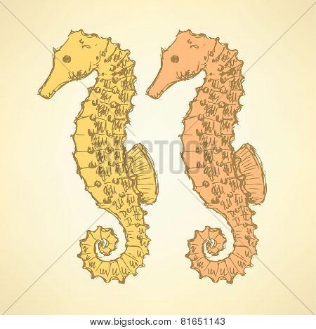 Sketch Cute Seahorse In Vintage Style