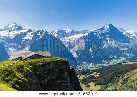 Panorama View Of Schreckhorn, Fiescherwand, Eiger