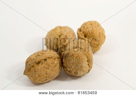 Four Walnuts on a White background - unopened