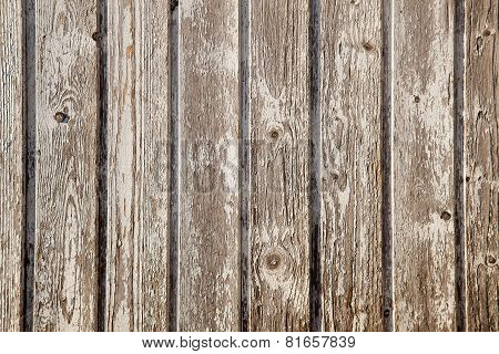 Old Planks With Peeling White Paint