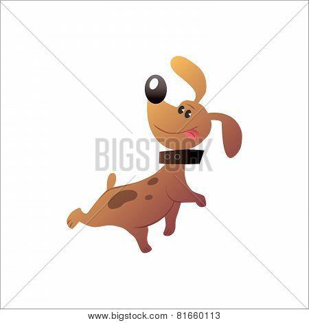 Happy Funny Dog