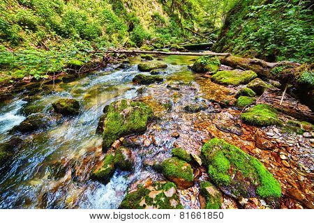 River Flowing Through A Gorge