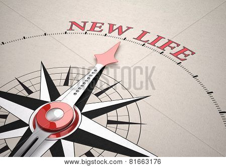 Direction Of New Life