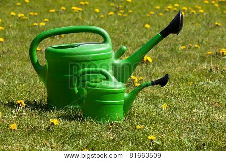 Two Green Watering Can On A Field Of Daisies.