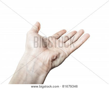 Men's Hand Palm Up Isolated On  Background