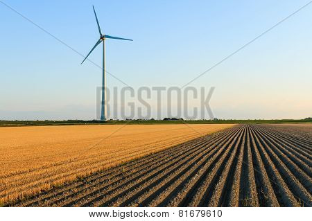 Windmill At Farmer Fields