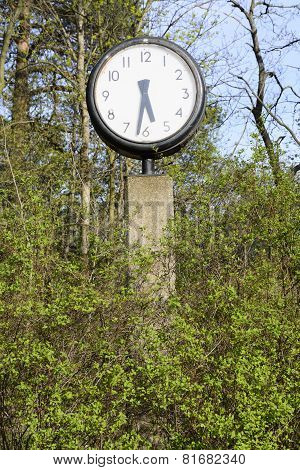 Clock In Green Spring Foliage At Five Thirty Pm