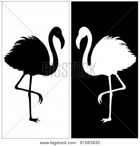 White And Black Silhouette Of Flamingos