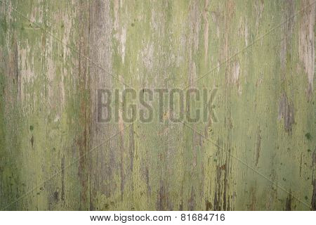 old moldy wooden surface