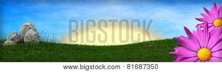 spring background with grass field and asters