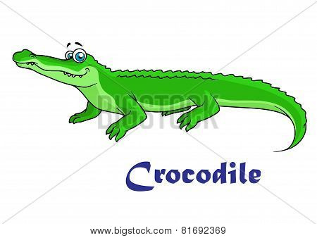Colorful green cartoon crocodile