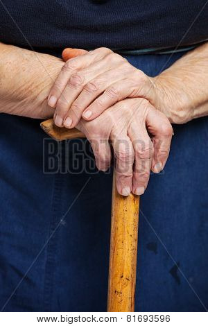 Senior woman's hands on wooden walking stick