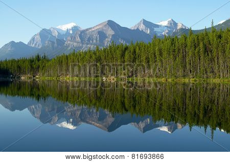 Mountain and forest Reflection in Mirror Lake