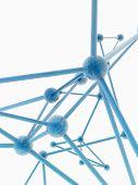 pic of plexus  - glass nerve plexus model on white background - JPG