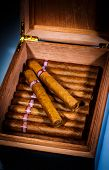 foto of cigar  - Close up of cigars in open humidor box - JPG