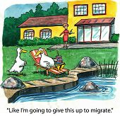 picture of snowbird  - Cartoon of ducks living luxurious life - JPG