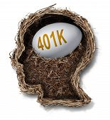 picture of human egg  - 401k plan financial concept as a nest egg pension fund investment in a bird nest shaped as a human head as a wealth planning finance and budgeting symbol - JPG