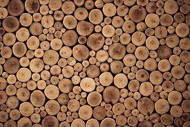 foto of lumber  - round teak wood stump background for decoration - JPG