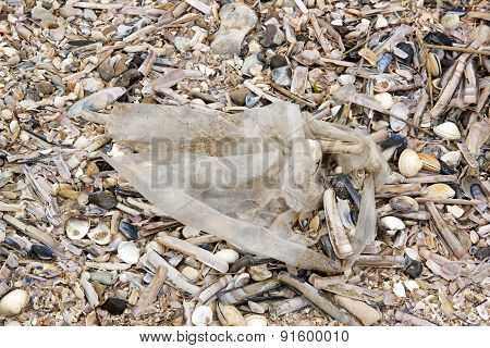 pollution on a beach, abandoned plastic bag on a beach