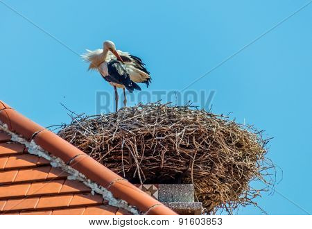 a stork nest on a achornstein in rust. burgenland, austria