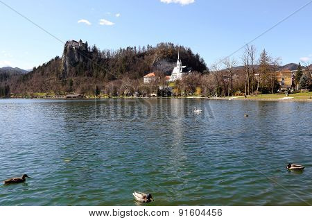 Church With Bell Tower On The Shore Of Lake Bled