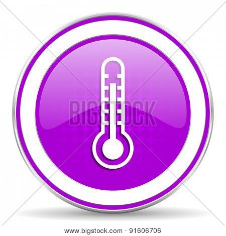thermometer violet icon temperature sign