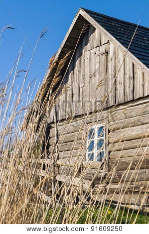 Old Wooden Rustic House And Hedge Through Reed