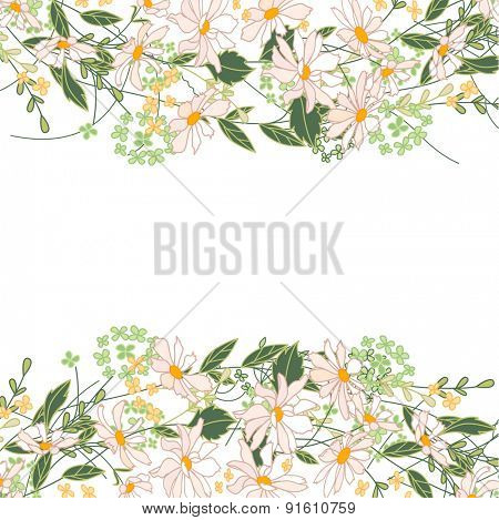 Backdrop with herbs, daisy and wild flowers isolated on white. Frame for your design, greeting cards, announcements, posters.