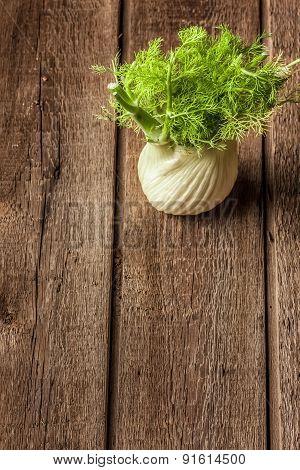fresh fennel full of vitamins and fibers