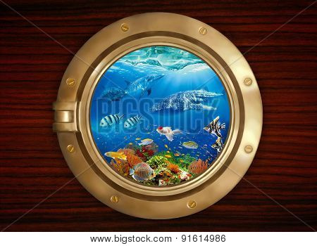 Porthole And Underwater World