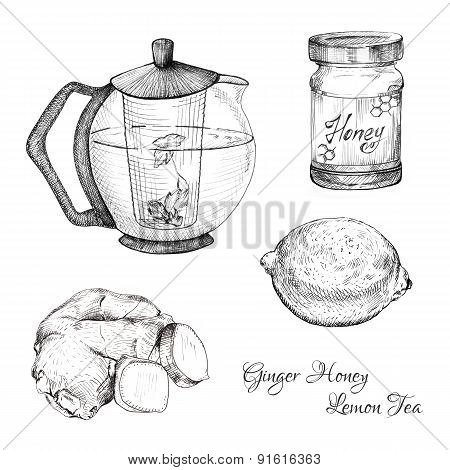 Ginger honey lemon tea ink sketches set