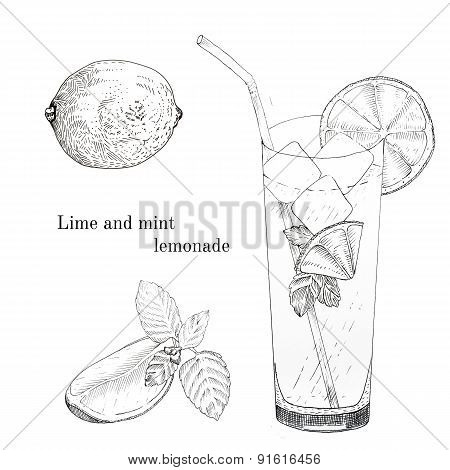 Lime and mint lemonade ink sketch set