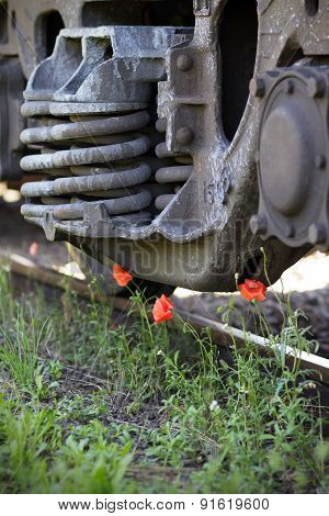 Poppies On The Railway Line
