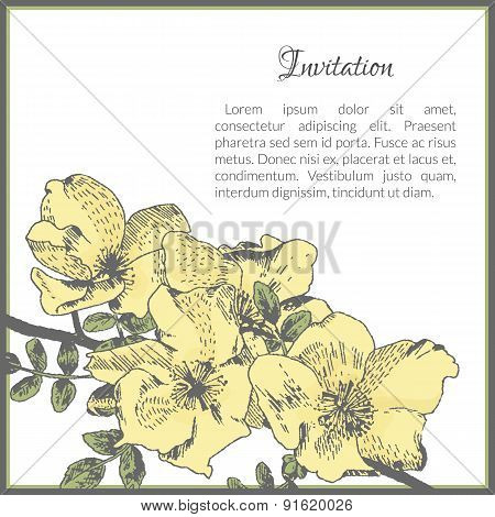Invitation card template with dog-rose flower